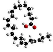 omega-3-procreation