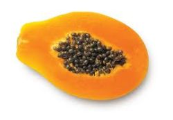 papaya-procreation