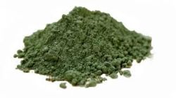 spirulina-procreation