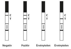 terhessegi_teszt_pozitiv_negativ_ervenytelen